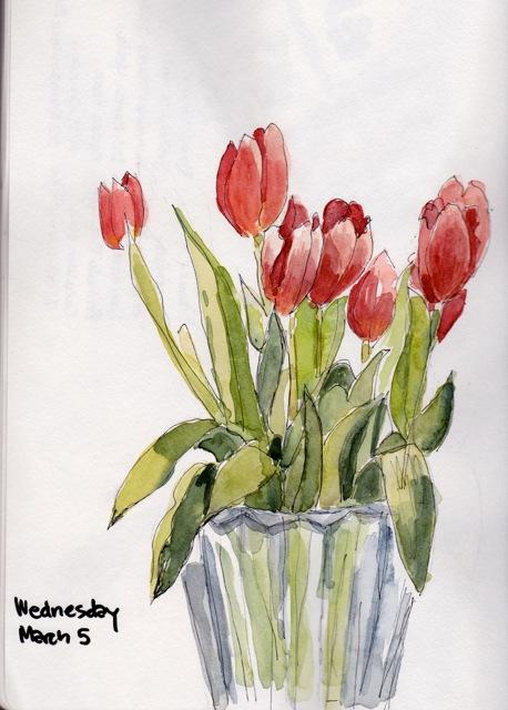 tulips mar 5 2014
