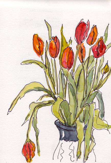 april 2 tulips
